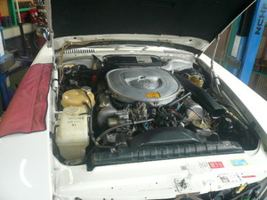 P1400577.JPG